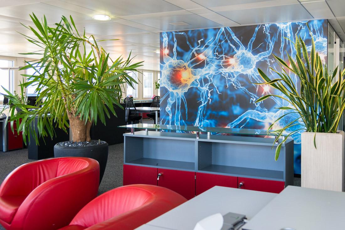 rote Sofas und Bild im Hintergrund mit energievollem Bild: Blau-Orange