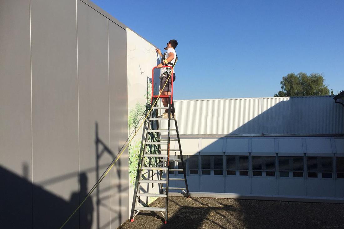 Arbeiter auf Leiter mit Sicherungsseil gesichert arbeitet an Fassade